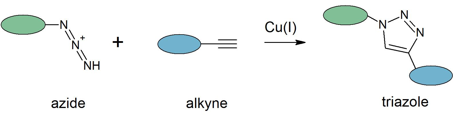 Azide-alkyne cycloadditionAlkyne